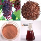 grape-seed-extract-95-opc