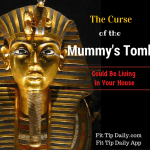 "The ""Mummy's Curse"" Could Be Living in Your House"