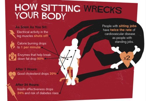 5 Stretches To Help Reverse The Effects Of Sitting Fit