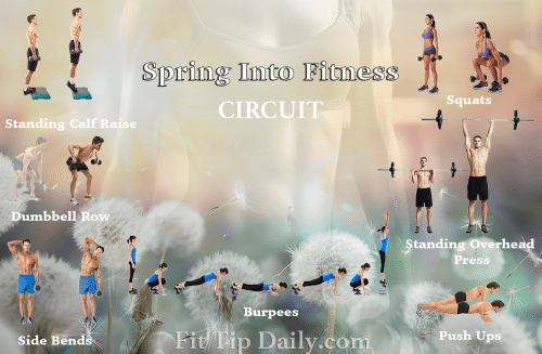 circuit training workout