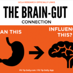 UCLA Research Proves Direct Link From Gut Bacteria to Brain