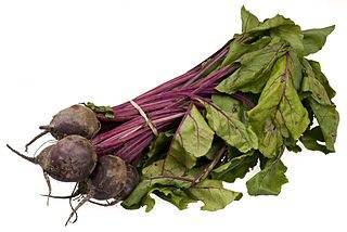 vitamins in beets