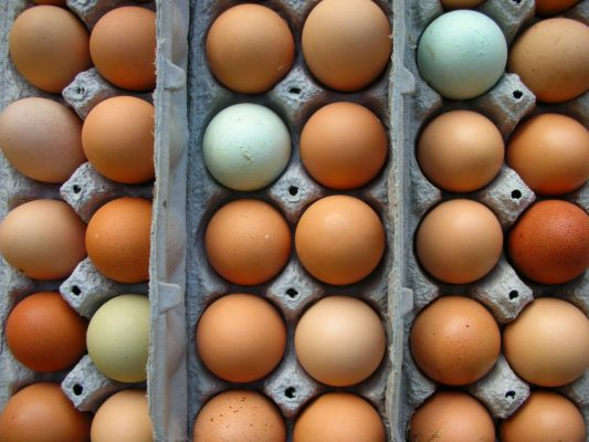 when to boil farm fresh eggs