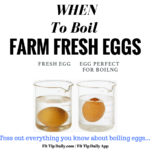 When to Boil Farm Fresh Eggs for the Perfect Outcome