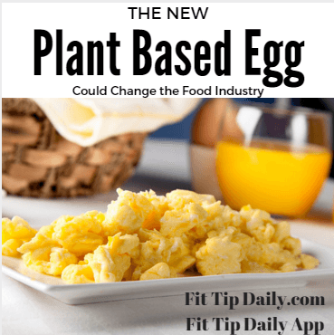 The New Plant Based Egg Could Change The Food Industry Fit Tip Daily